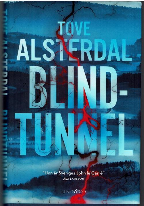 Blindtunnel 001.jpg